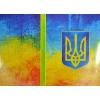 Обложка для паспорта 14 (жовто-блакитний герб)